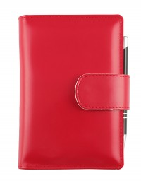 """""""Basic"""" daily diary - cm 12x17 - red"""