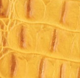 Croco yellow